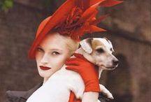 Hats / my favourite hats hatinators and fascinators Races and weddings