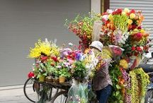 Food and Flower Markets / by Denise Opperman