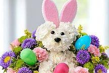 Cadouri DE PASTE / EASTER Gifts / Idei de cadouri pentru Paste / Easter Gifts ideas