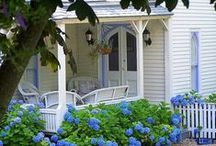 Cottage on Hydrangea Hill / by Denise Opperman