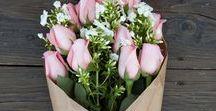 Fleurs ~ Flowers