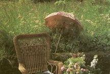Garden / by Peta Couvret