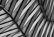 Arch_Facades / Architecture_Facades