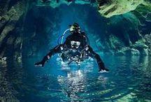 Diving ♥