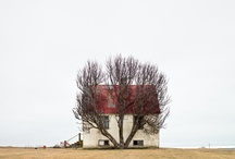 With Love   Farm life loving / by Esther van der Woude