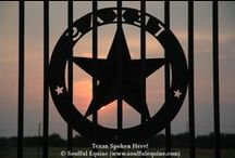 Texas Style / What Soulful Equine likes about Texas.