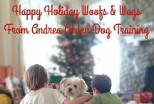 Andrea Arden Dog Training in NYC / The clients (people & dogs), team and events of Andrea Arden Dog Training! In NYC and interested in visiting or attending one of our classes or groups? Seeking a source on dog training or other issues for media? Please call 212-414-9597.