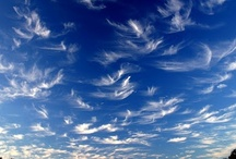 Clouds / by Carrie Buxbaum