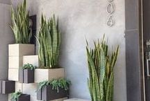 Weekend DIY / Do-It-Yourself projects to spruce up all four walls. Go ahead, get your toolbox ready. / by Zillow