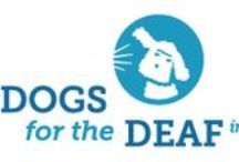 """Dogs for the Deaf / """"Rescuing and professionally training dogs to assist people, enhance lives & provide greater independence is what Dogs for the Deaf is all about."""" Please learn more about this wonderful organization."""