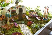 Fairy Gardens are Enchanting