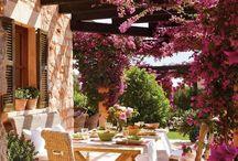 Jardins que adoro / gardening