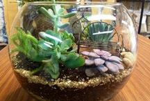 Terrariums: Worlds under Glass