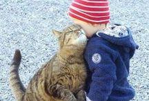 Cats + Kids