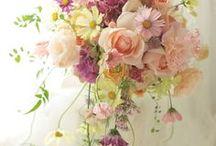 bouquet (ブーケ・花束) / ウエディングブーケとか花束のイメージ