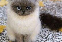 Animals: I like cats the best (地上の生き物) / 陸上の動物 (猫が一番好きだけどね^^♪)