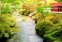 Box garden · Courtyard · Gardening (箱庭・中庭・園芸)