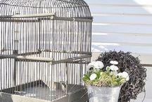 *Cages et maisons d'oiseaux*