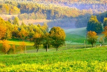 Őrség / Őrség, Hungary, Magyrország
