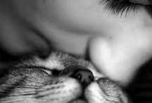 -Pet Lovers- / Because their unconditional love is what takes our heart away!