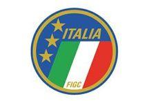 Marchio FIGC / Storia ed evoluzione del marchio FIGC