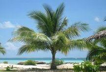 Travel Kiribati