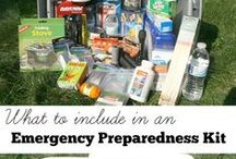 Emergency Preparedness / When renting, it's a GREAT idea to be prepared.  Remember your pets too!