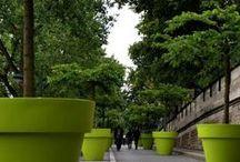 ΚΗΠΟΣ ΦΥΤΑ ΚΗΠΟΥΡΙΚΗ / Κήποι και φυτά ανά τον κόσμο, συμβουλές για κήπους και φύτεμα