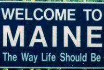State O' Maine...  / by susan p