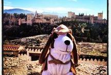 Rastreator viajeros / Aquí podréis seguir a nuestra mascota en sus viajes alrededor del mundo