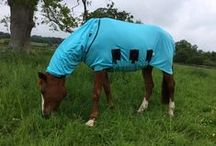 Anti Itch Rugs For Horses / Prevent sweet itch with our great range of anti-itch rugs for horses.