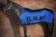 The Best Show Clothing For Horses From Snuggy Hoods / Choose the perfect show clothing for your horse.
