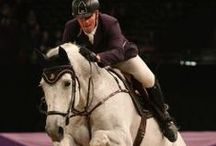 Hoys - Horse of The Year Show 2014 / Horse Of The Year Show. Snuggy Hoods stand!