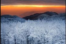 Winter / Beauty