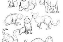 draw koty