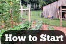 farming ideas / homesteading ideas / by Rita Littlefield