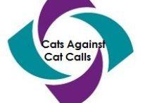 Cats against Cat Calling