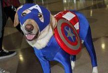 Super Hero / by Peggy JW