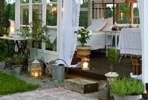 Luxurious Outdoor Decor