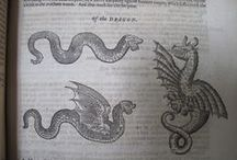 Animals / Illustrations of prints from The History of four-footed beasts and serpents, 1658 and Exoticorum ... animalium, plantarum, 1605.
