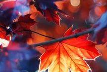 Jesień w duszy mi gra...