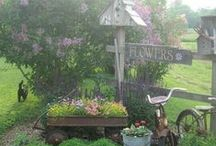 gardening and landscaping ideas / by Linda Visor