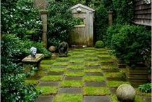 Outdoor Space.. / by Thea Burras