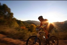 Biking in Colorado / Cruiser, road or mountain bike? However you ride Colorado was made for biking. / by Visit Colorado