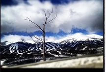 Colorado Ski Areas & Resorts / 25 Ski Areas & Resorts. 40,000 Acres of Terrain. America's Best Skiing.  / by Visit Colorado