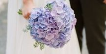 My Wedding in Purple