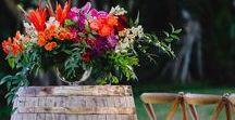 My Colorful Wedding
