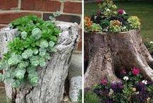 For home /garden/soul