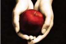Twilight/ The host