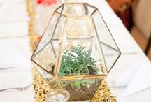 Using ※ Terrariums / Use terrariums in your wedding decor for a unique, quirky and dynamic feel. Perfect for table scapes, hanging from trees or decorating a venue.